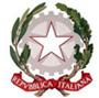 Istituto Istruzione Superiore Tagliamento logo